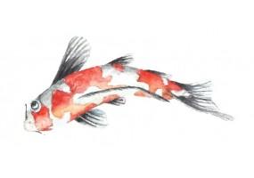 Sticker chinois poisson