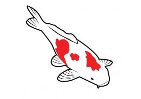 Sticker chinois poisson rouge