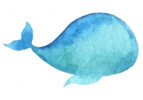 Sticker coquillage baleine