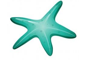 Sticker coquillage étoile de mer verte