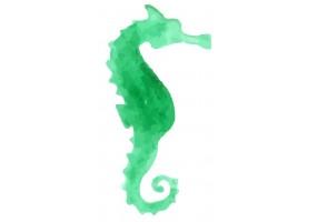 Sticker coquillage hippocampe vert