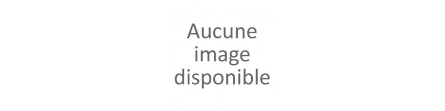 Bouledogue Anglais