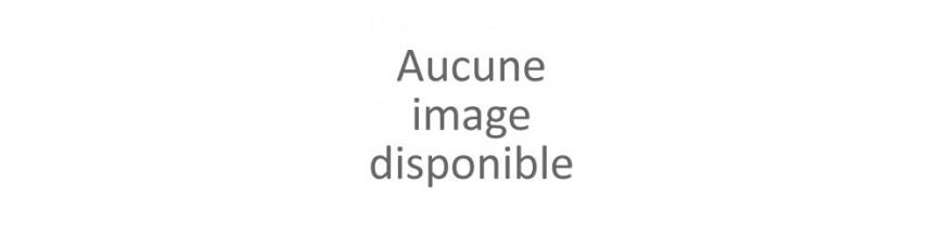Levrier Afghan
